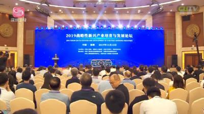 2019战略性新兴产业培育与发展论坛举行