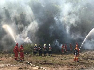 """防患于未""""燃""""!坪山区开展处置森林火灾应急演练"""