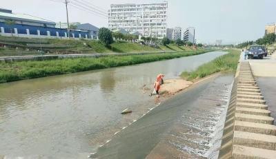 茅洲河舊貌換新顏!鳳凰街道七大專項行動改善水環境
