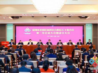 龙岗区新联会成立!深圳新的社会阶层人士区级组织实现全覆盖