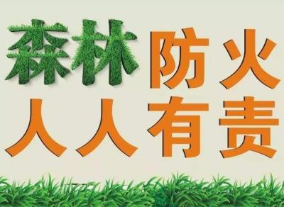 嚴防死守!大鵬新區管理委員會發布森林防火禁火令
