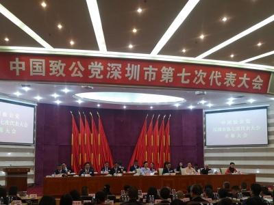 王大平当选致公党深圳市委会主委