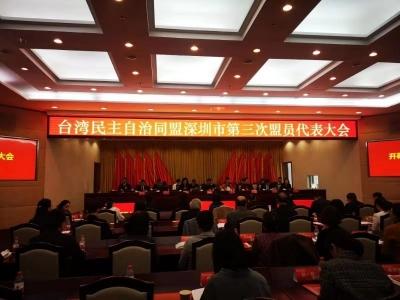 林娜當選臺盟深圳市委會主委