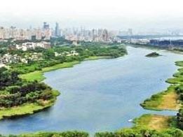 決戰水污染治理|治水志愿者守護深圳碧水清波