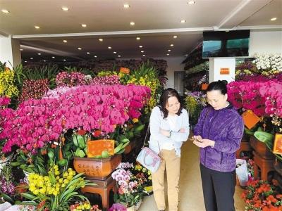 春節家里適合擺什么花?逛花市,送你一份買花指南!