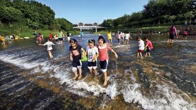 決戰水污染治理|龍崗河水質顯著提升沿岸生態恢復