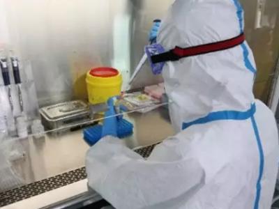 鹏城实验室开展新型冠状病毒传播模型联合研究