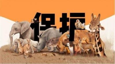 多位全国人大代表建议完善野生动物保护法,用最严厉法律守护人民群众健康安全