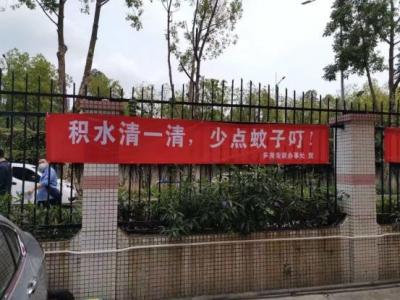 """第33個""""清潔深圳月""""來了,羅湖大力開展愛國衛生活動"""