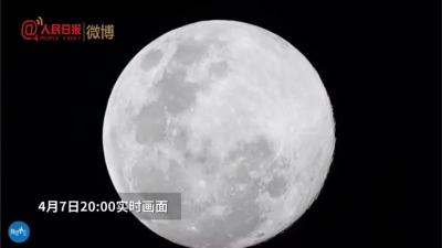全年最大超級月亮特寫,昨晚你拍到了嗎?