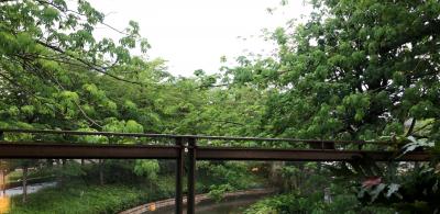明后天局地仍將有暴雨,市三防辦:加強應急處置能力