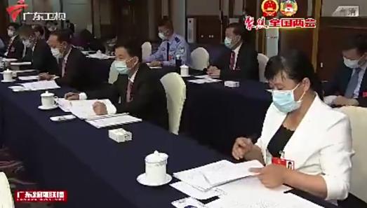 广东代表团举行全体会议审议政府工作报告,李希马兴瑞李玉妹发言
