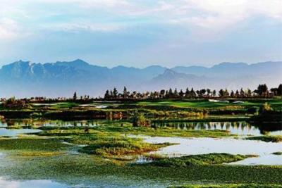 川渝林業部門簽署合作協議 共筑長江上游生態屏障