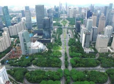 深圳:让党旗飘扬在基层治理一线
