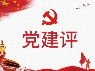 """黨建評:基層黨組織選舉要""""立行""""還得""""管用"""""""