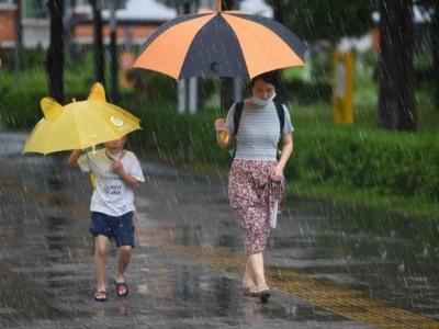 鹏城雨中即景