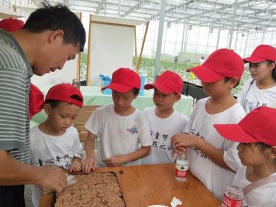 新羌社区举办童心童梦,农耕文明——研习自然之旅活动