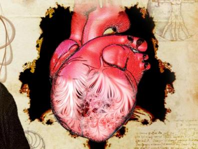 """2.5万张磁共振图""""出手"""",达·芬奇500年前留下的心脏谜题解开了"""