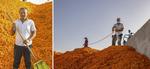 (脱贫攻坚·图片故事)(6)脱贫靠双手——新疆和田地区未摘帽县就业见闻