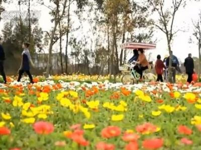 中国旅游协会:2020下半年国民旅游休闲消费稳步回升