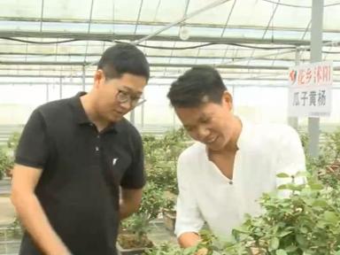 农业农村部:我国1700多万农民工实现就地就近就业