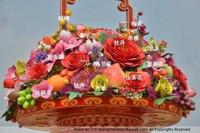 天安门国庆花篮最全揭秘!带你认清每一种花!