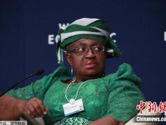 获欧盟支持 这位非洲候选人当选WTO总干事已无悬念?