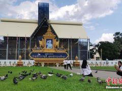 柬埔寨严查社交媒体虚假信息 违法违规者将受罚