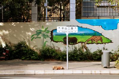 """""""三区融合""""再添亮丽风景,南山这个街道300米壁画绘就""""世外桃源"""""""