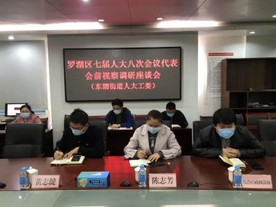 东湖街道人大工委召开代表会前调研座谈会