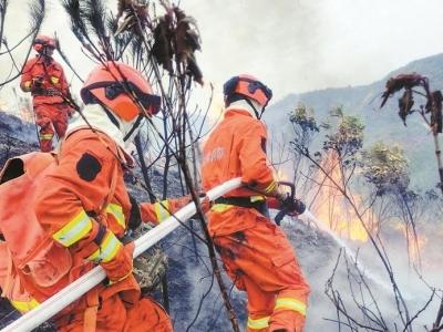 深圳多措并舉加強森林消防能力建設 構筑森林安全屏障守衛綠水青山