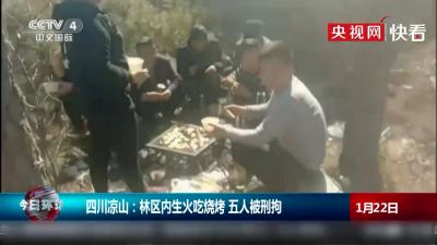 5人凉山林区生火烤鸡被刑拘