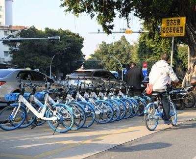 全民参与!江门共享单车文明使用渐成风尚