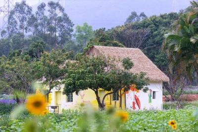 深圳两地上榜!第二批广东省文化和旅游特色村名单公布