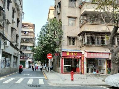 老小区新模样!江门市蓬江区美景社区改造升级获居民点赞