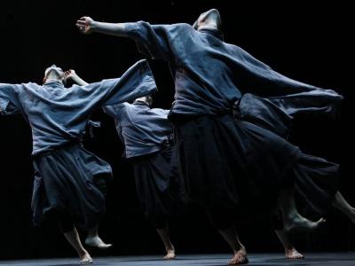 竖琴、小提琴、现代舞赏不停!本周坪山大剧院有3场演出+1场公益分享会!