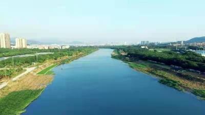 东莞市优秀基层河长:为了守护一片清流,始终奋战在河道周边