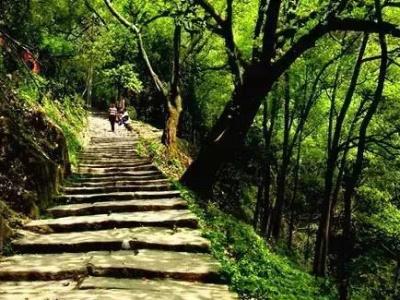 广东省首条国家级登山健身步道广州黄埔亮相